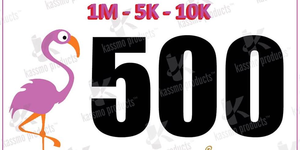 ROCKWALL   The HOT Pink Flamingo 1M 5K 10K