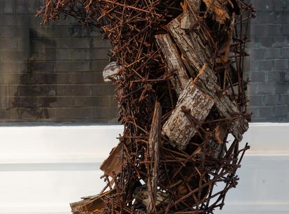 """Entropy"" by Marcia Wolfson Ray"