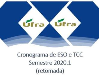 Cronograma de ESO e TCC