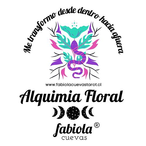 Kit Terapia de Alquimia Floral: Personalizada (2 un)