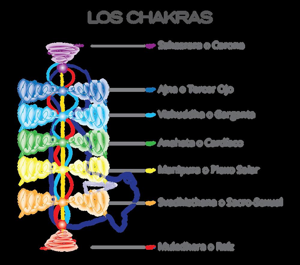 Imagen 2 Los Chakras