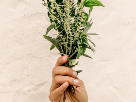 Esencias Florales Psicosomáticas