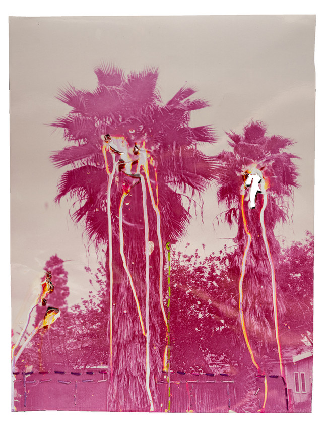 Two pink palm trees - Bleeding, 2021  Chemically altered chromogenic photograph accentuated with thread  14 x 11 ins (35.56 x 27.94 cms)