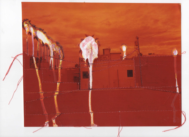Bleeding Trees, 2015  Chemically altered chromogenic print accentuated with thread  7.5 x 9.50 ins (19.05 x 24.13 cms)