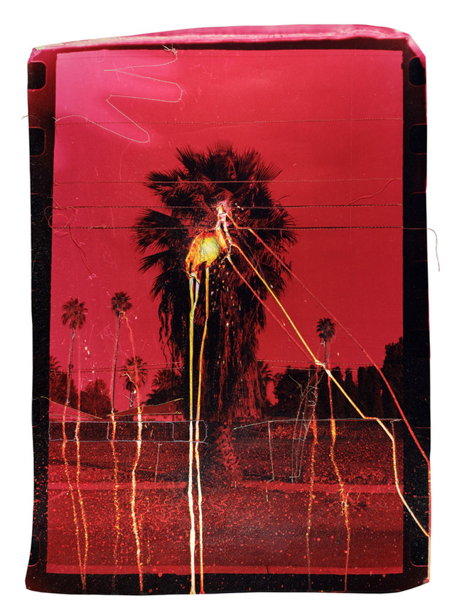 Bleeding Red Palm Tree, 2018  Chemically altered chromogenic print accentuated with thread  27 x 19 ins (68.58 x 48.26 cms)