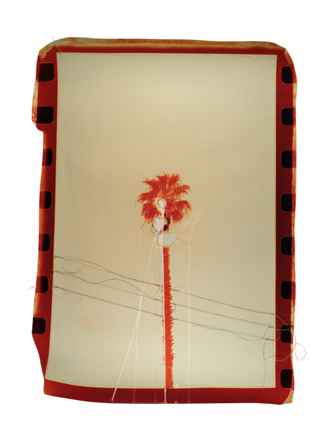 Punctured Red Palm Tree, 2018  Chemically altered chromogenic print accentuated with thread  23 x 18 ins (58.42 x 45.72 cms)