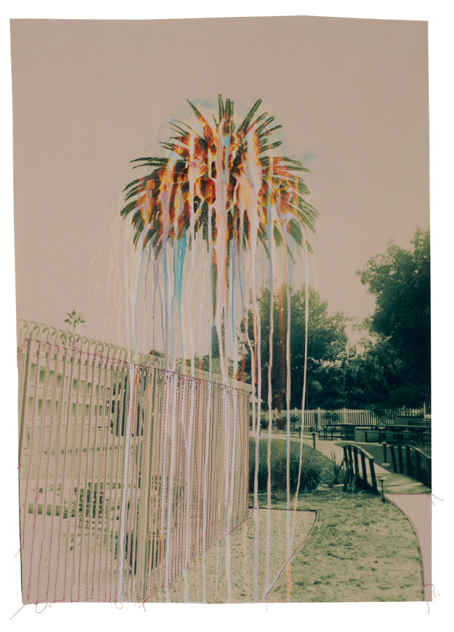 Green rainbow palm tree, 2016  Chemically altered chromogenic print accentuated with thread  24 x 20 ins (60.96 x 50.80 cms)
