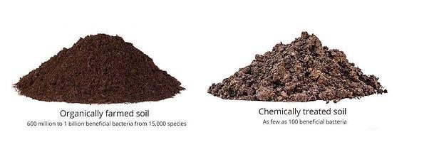 Soil difference.jpg