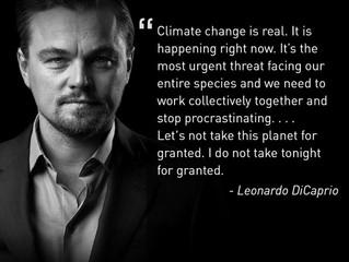 China & Leonardo DiCaprio say No to Beef