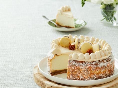 עוגת גבינה שוקולד לבן אלפחורס