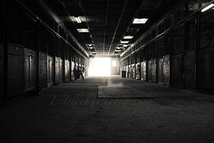 Photo de l'intérieur de l'écurie de pensions