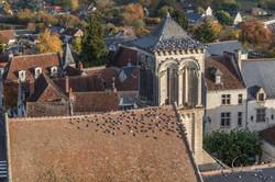 Nuée de Pigeons sur l'abbaye
