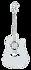 gitaar.png