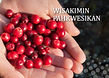 CRANBERRY BOOKLET CREE BE 3 WEB 13.jpeg