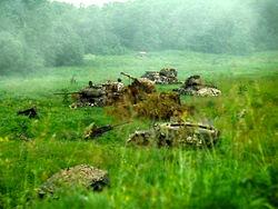 stalker_tanks