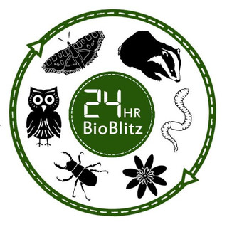 """Esploratori per un giorno con """"Bioblitz"""""""