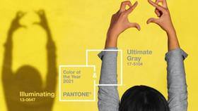 Pantone Yılın Rengi | 2021