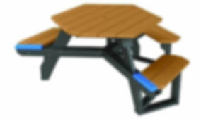 handicapped table.jpg