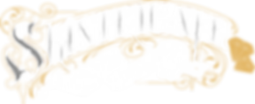 Skintricate Tattoo Company Logo