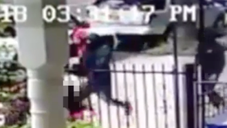 Caught on Video! Bronx Shootout Where Shooters Try to Abduct Victim's Toddler!