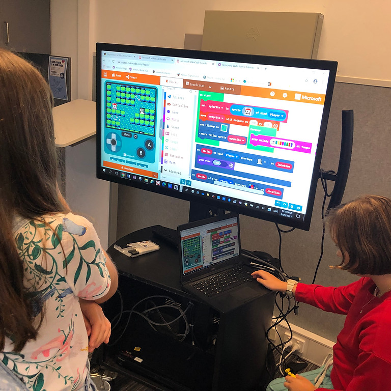 Virtual Classroom - Coding Projects -Beginner