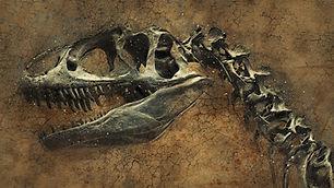 dinosaur-2106811_1280.jpg