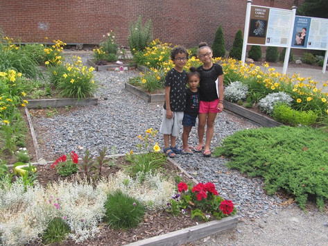 In our all volunteer community flower garden