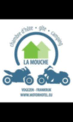 koetsier rijopleidingen La Mouche