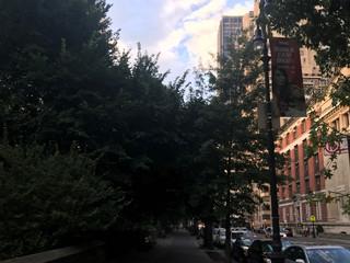'Fall in NY'