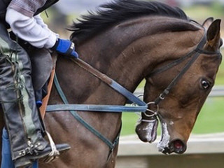 Controlling the 'Race Horse'