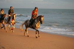 Plage de la Davière, balade à cheval