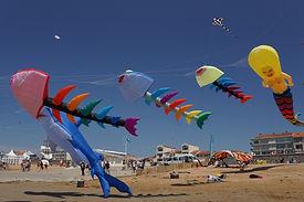 cerfs volants plage.jpg