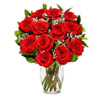 Valentine's Day 1 Dozen Red Rose Bouquet