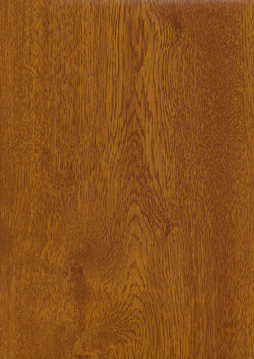 golden oak.jpg