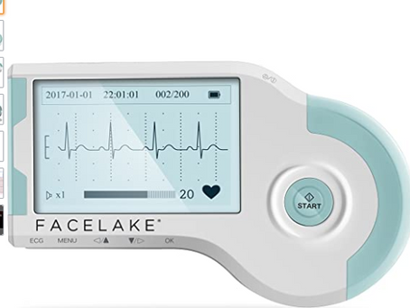 Facelake FL20 Portable Monitor