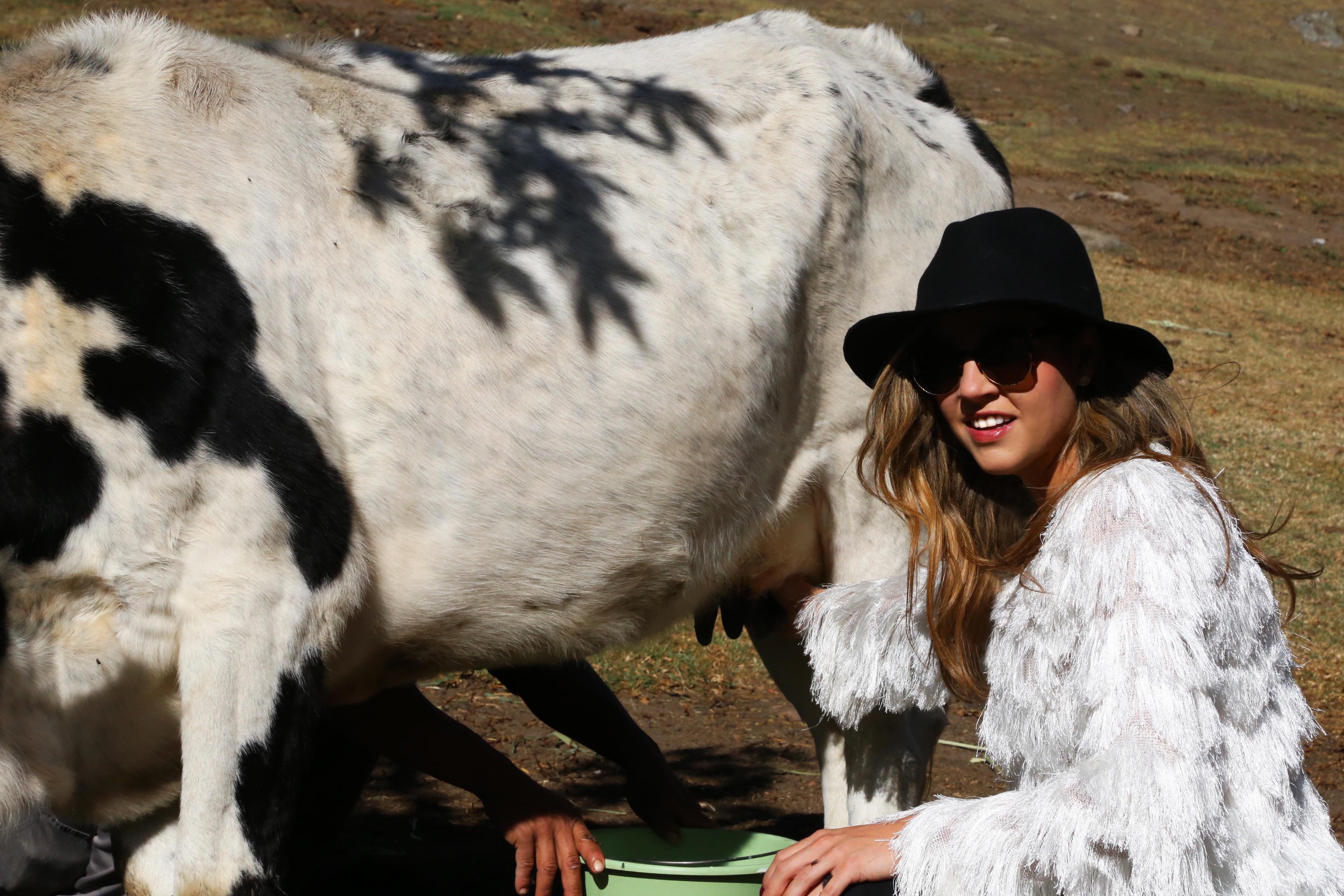 Como ordeñar vacas con glamour