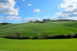 Lovely Italia