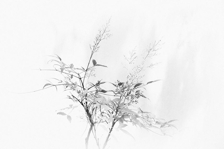 Marian - Zwart wit - 2.jpg