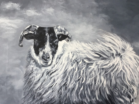 The Mill Arts Centre Exhibition: Janet Bird