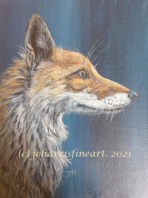 Fox at Dusk  by Jo Harris