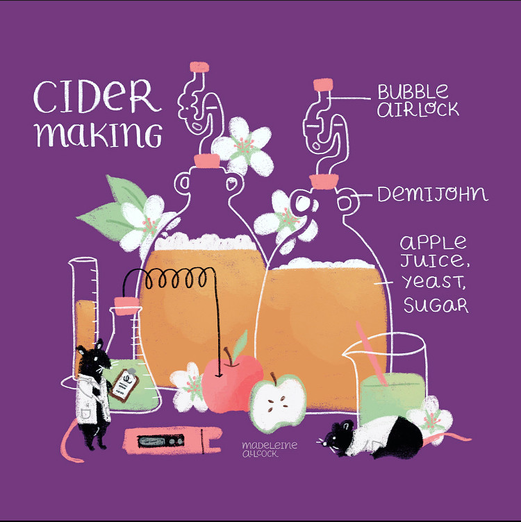 Cider Making – Experiments