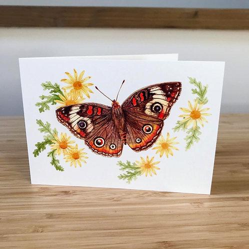 MA Buckeye Butterfly Card