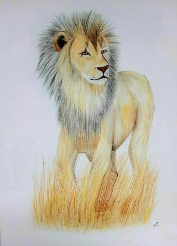 Lion A3 Print.jpg
