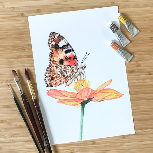 MA Painted Lady Butterfly Print