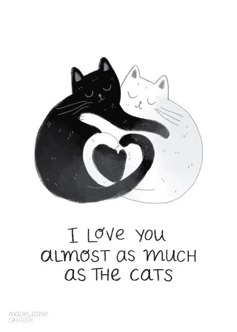 Cats_Card 1.jpg