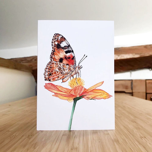 MA Painted Lady Butterfly Card