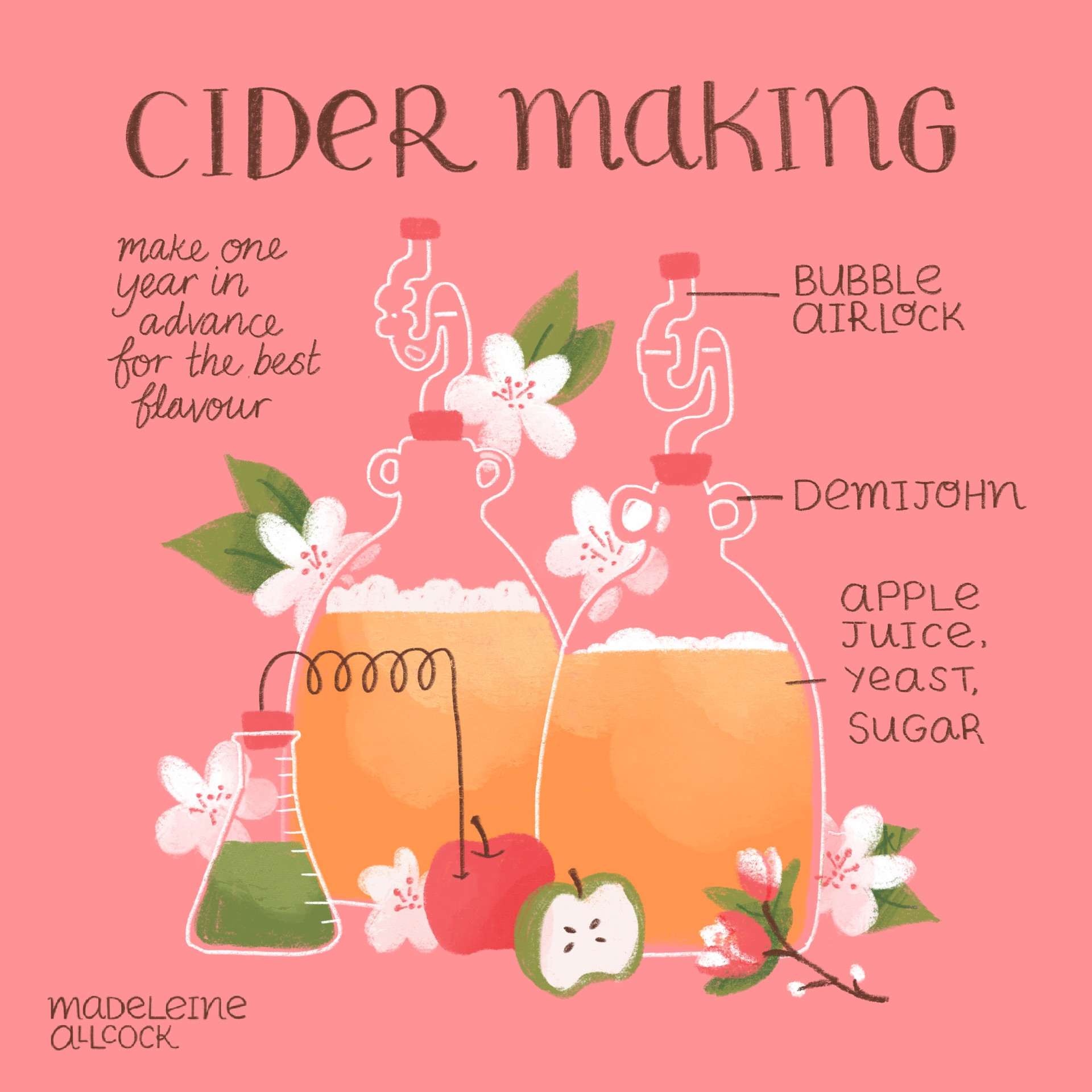 Cider Making – Lifestyle