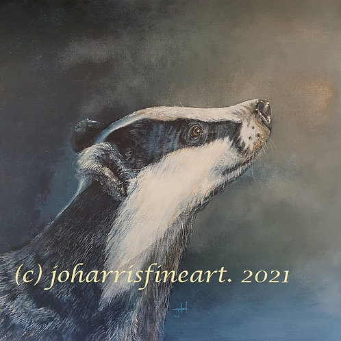 Inquisitive Badger  by Jo Harris