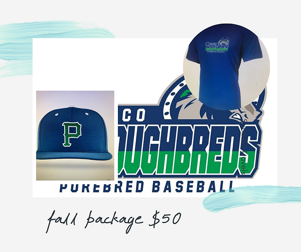 fall 2020 package $50 (1).png