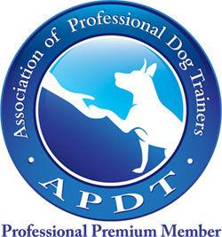 APDT_Prof_Premium_COLOR.jpg